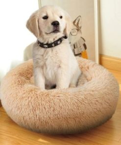 Coussin apaisant chiot