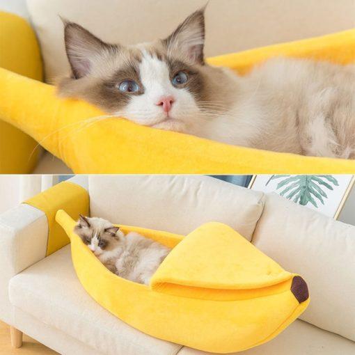 Niche forme banane