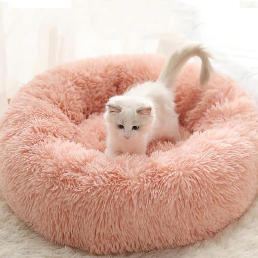 Panier apaisant pour chat