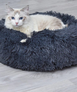 Panier apaisant pour chats